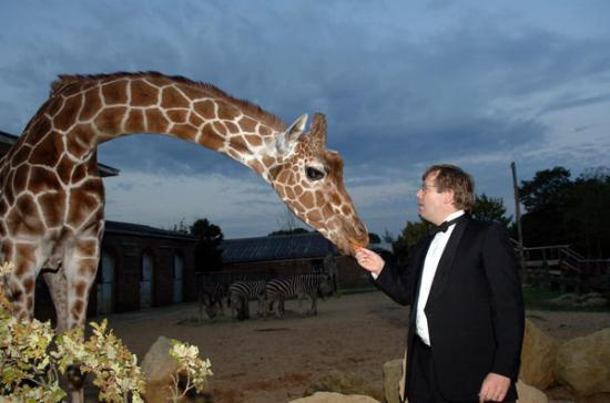 Featured Wedding Venue: London Zoo