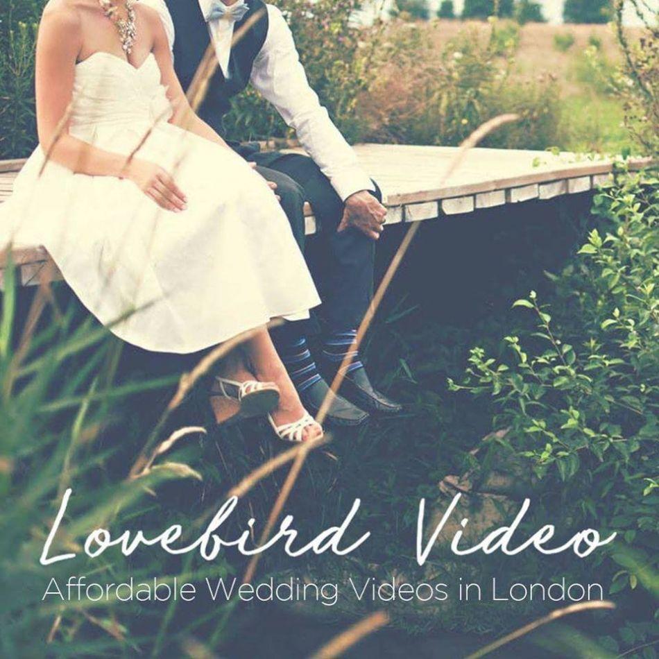 LoveBirdVideos